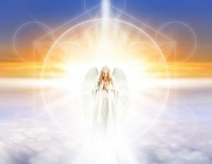 angelsweek