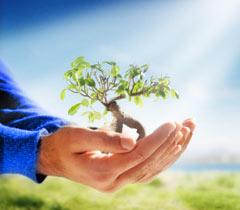 Karma Yoga – Yoga des selbstlosen Handelns