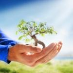 Karma Yoga - Yoga des selbstlosen Handelns
